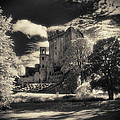 Blarney Castle Cork by Colm Jackson