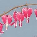 Bleeding Hearts Print by Anastasiya Malakhova