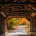 Blow-Me-Down Covered Bridge Cornish New Hampshire Print by Edward Fielding
