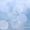 Blue bokeh background Poster by Elena Elisseeva