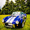 Blue Cobra Poster by Phil 'motography' Clark