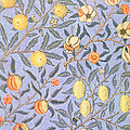 Blue Fruit Poster by William Morris