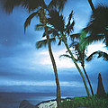 Blue Hawaii With Planets at Night Print by Connie Fox