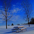 Blue On A Snowy Day Print by Dan Sproul