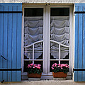 Blue window shutters Poster by Nomad Art And  Design