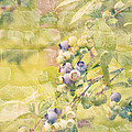 Blueberries Painted on the Wall Poster by Alanna Dumonceaux