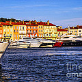 Boats at St.Tropez harbor Print by Elena Elisseeva