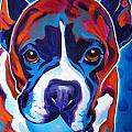 Boxer - Atticus Print by Alicia VanNoy Call