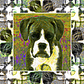 Boxer Dog 20130126 Print by Wingsdomain Art and Photography
