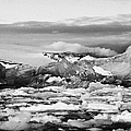 brash sea pack ice forming together with dirty blue iceberg as winter approaches cierva cove Antarct Print by Joe Fox