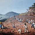 Breaking Up The Land, From Ten Views Print by William Clark