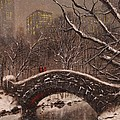 Bridge in Central Park Poster by Tom Shropshire