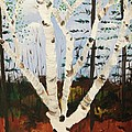 Brightest Birch Poster by Suzanne  Marie Leclair