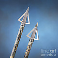 Broadheads on Blue Print by Jerry McElroy