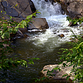BROOK of TRANQUILITY Print by KAREN WILES