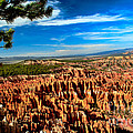 Bryce Print by Robert Bales