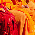 Buddhist Monks 04 Print by Rick Piper Photography