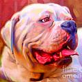 Bulldog Portrait Print by Iain McDonald
