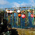 Buoys and Pots in Sennen Cove Poster by Terri  Waters
