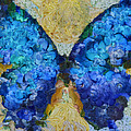 Butterfly Art - d11bb Poster by Variance Collections