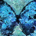 Butterfly Art - d11bl02t1c Print by Variance Collections