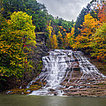 Buttermilk Falls Poster by Mark Papke