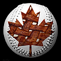 Canadian Bacon Lovers Baseball Square Poster by Andee Photography