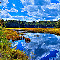 Cary Lake near Old Forge New York Print by David Patterson