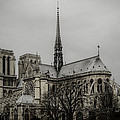 Cathedral of Notre Dame de Paris Print by Marco Oliveira