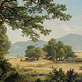 Catskill Meadows in Summer Print by Asher Brown Durand