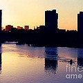 Charles River Rower at Dawn Poster by Kenny Glotfelty