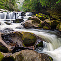 Chattooga River Potholes Waterfall Highlands NC - The Artist's Hand Print by Dave Allen