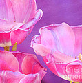 Cheers Print by Irina Wardas