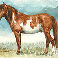 Cherokee Wild Stallion of Sand Wash Basin Poster by Linda L Martin