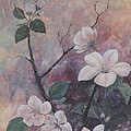 Cherry Blossoms in the Cosmos Print by Sandy Clift