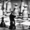 Chess Game in black and white Poster by Paul Ward