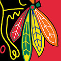 Chicago Blackhawks Poster by Tony Rubino