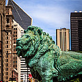 Chicago Lion Statues at the Art Institute Print by Paul Velgos