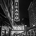 Chicago Nights Poster by Terry Rowe