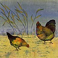 chickens on silk Poster by Carolyn Doe