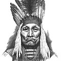 Chief Curly Bear Print by Lee Updike