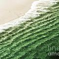 China Beach Wave Print by Artist and Photographer Laura Wrede