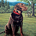 Chocolate Lab Print by Richard De Wolfe
