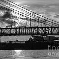 Cincinnati Suspension Bridge Black and White Print by Mary Carol Story
