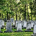 Civitl War Warrior Graves Print by Linda Phelps