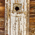 Classic Rustic Rural Worn Old Barn Door Poster by James BO  Insogna