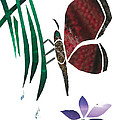 Clinging Butterfly Print by Earl ContehMorgan
