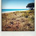 Coastline by Les Cunliffe