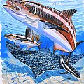 Cobia on Rays Poster by Carey Chen