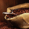 Coffee beans in burlap sack Poster by Sandra Cunningham